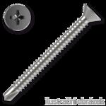 Bohrschrauben, Senkkopf, TEX 4,8x100mm DIN7504P