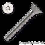 Senkschrauben mit Innensechskannt 6x60mm, DIN 7991, Kl. 10.9, verzinkt